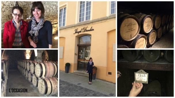 wineophiles burgundy at mjd