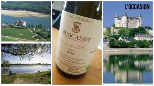 The sights of Pays Nantais & my bottle of Muscadet from Château de la Fessardière. Wine bottle is my photo, all other credits to ©InterLoire