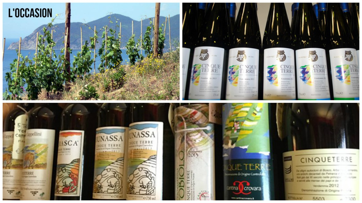 ligurian wines