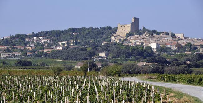 26148-650x330-autre-domaine-saint-prefert-chateauneuf-du-pape