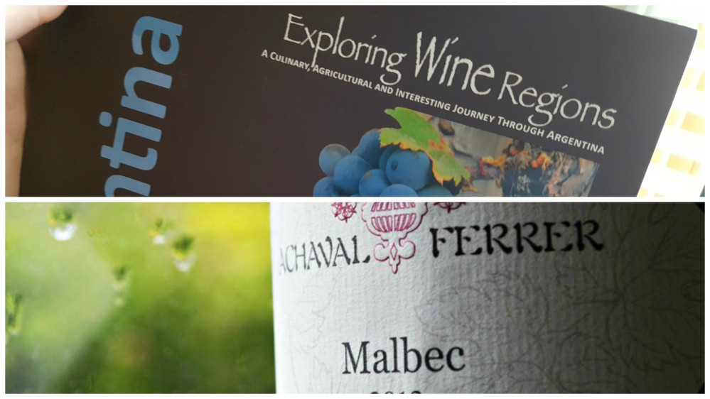Exploring Wine Regions: Argentina with Achaval-Ferrer 2013 Malbec