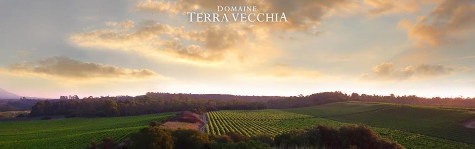 domaine-terra-vecchia-vineyards