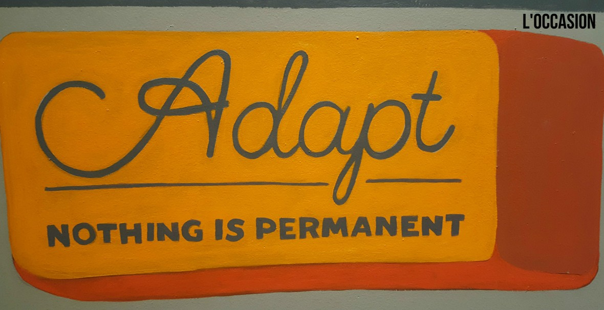 Adapt Nothing is Permanent