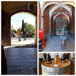 Languedoc Wine Cave
