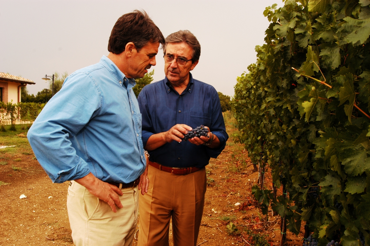 Italian Merlot advocates and growers.