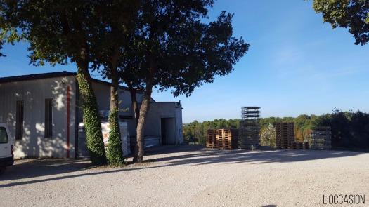 Organic wine, biodynamic wine, France