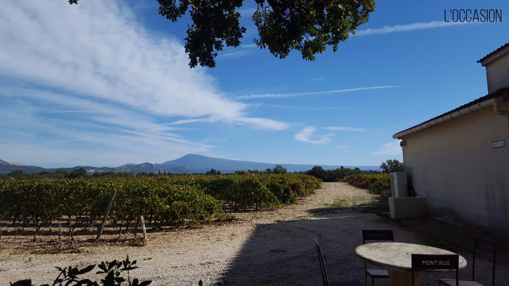 Mount Ventoux, Biodynamic Vineyards, Sarrians, Provence Wine