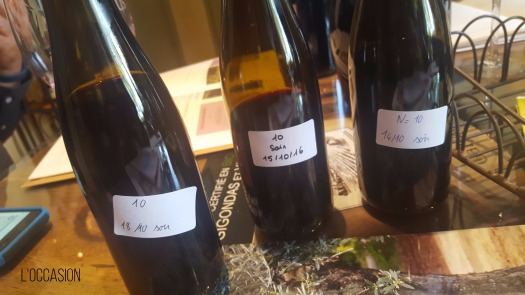 Barrel samples, wine Gigondas, Vacqueras