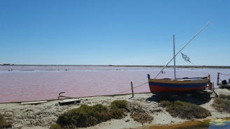 Pink Sea, Pink Lake, Mediterranean Sea