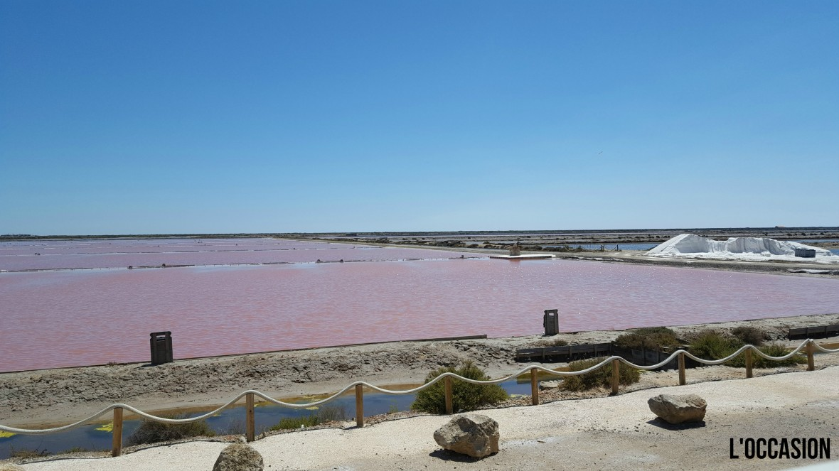 Camargue, French Mediterranean, French Rosé