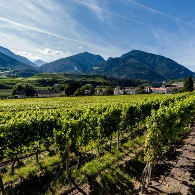Florian Andergassen and the Alto Adige Website (http://www.altoadigewines.com/en/home.html)