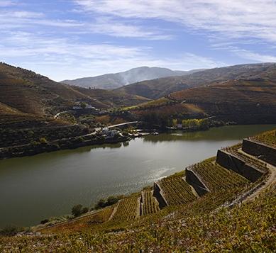 Douro, Courtesy: Wines of Portugal