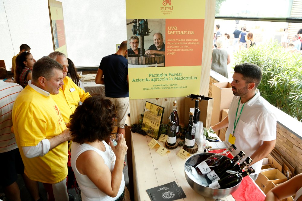 Italian Wine Tasting, What is Emilia-Romanga, what is rosato