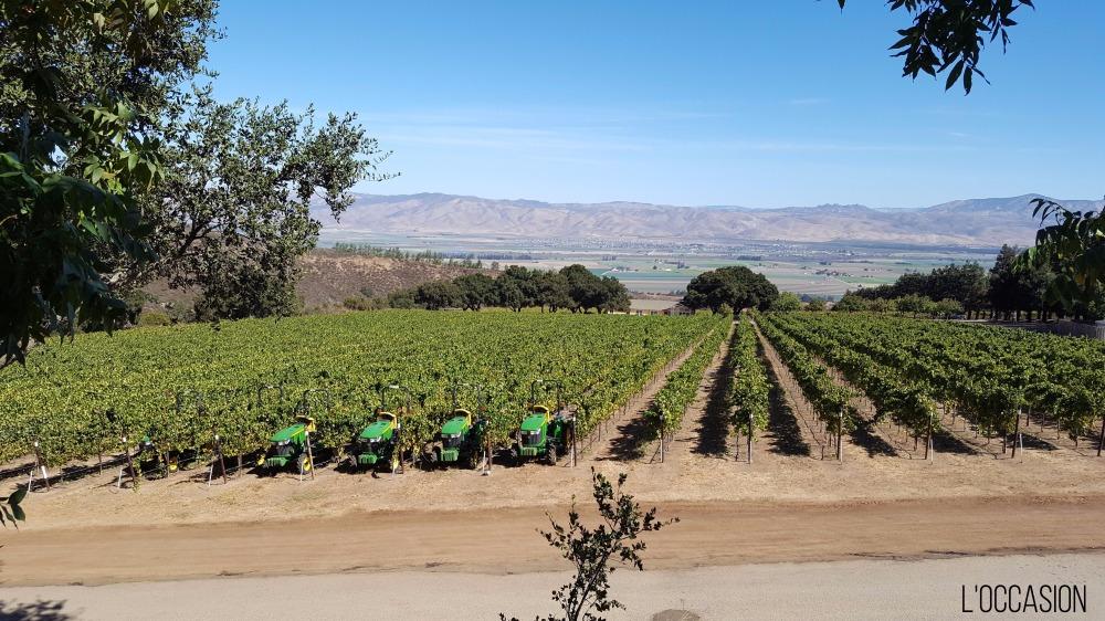 Salinas Valley, Santa Lucia Highlights, Pinot Noir, Wine Star Awards