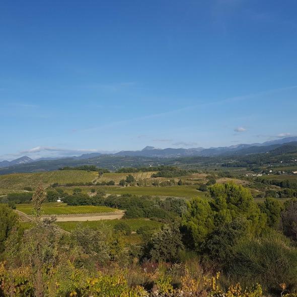 Coteaux des Travers, Dentelles de Montmirail, Southern Rhone
