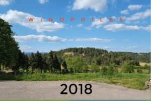 wine writer, wine blog, best wine blog, French wine blog