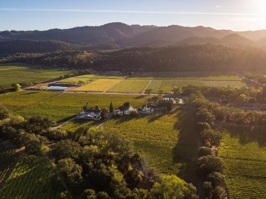 Italian wine from Napa, Napa Valley Vintners, Wine from California