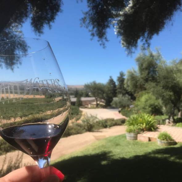 red wine from California, olive groves, winery for a wedding
